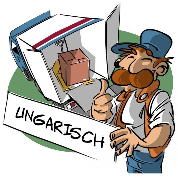 Unterweisung Sicherheit an der Laderampe ( Ungarische Version)